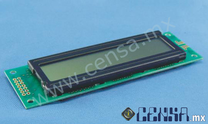 DMC20261N Display Module 20X2